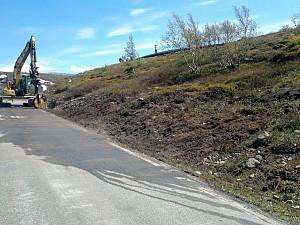 FV 243 Aurland-Lærdal, kunstprosjekt Bjørnehi Vedahaugane